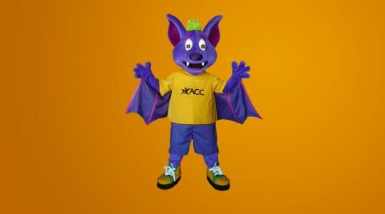 river_bat_acc